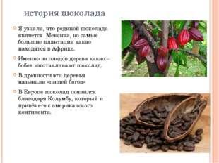 история шоколада Я узнала, что родиной шоколада является Мексика, но самые б