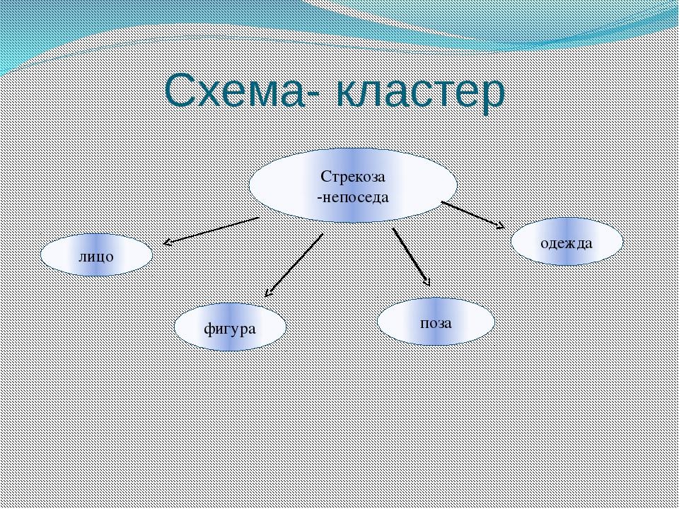Схема- кластер Стрекоза -непоседа лицо фигура поза одежда