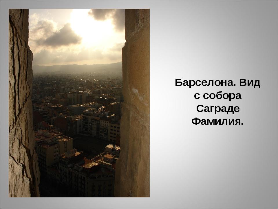 Барселона. Вид с собора Саграде Фамилия.