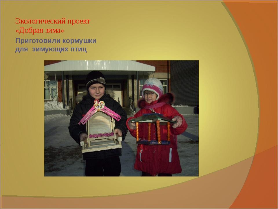 Приготовили кормушки для зимующих птиц Экологический проект «Добрая зима»