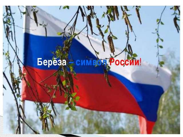 Без берёзы не мыслю России, –  Так светла по-славянски она,  Что, быть мож...