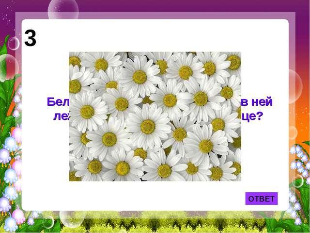 ОТВЕТ Белая корзина, золотое донце - в ней лежит росинка и сверкает солнце? 3
