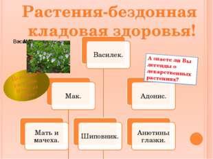 Растения-бездонная кладовая здоровья! А знаете ли Вы легенды о лекарственных