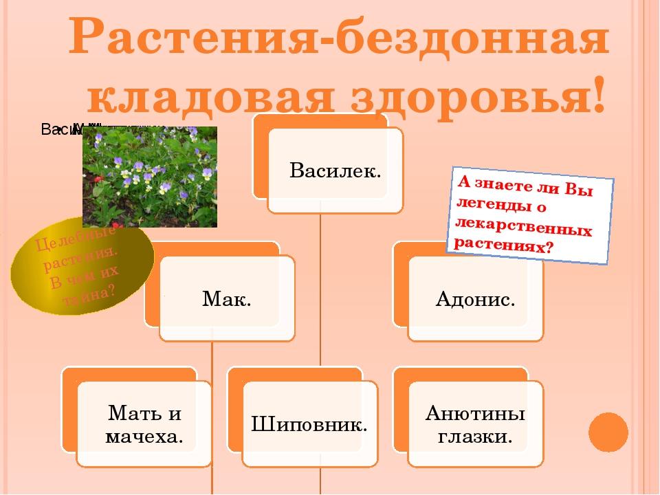 Растения-бездонная кладовая здоровья! А знаете ли Вы легенды о лекарственных...