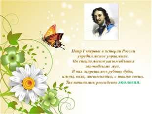 Петр I впервые в истории России учредил лесное управление. Он специальным ука