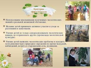 Использование школьниками полученных экологических знаний в реальной жизненн