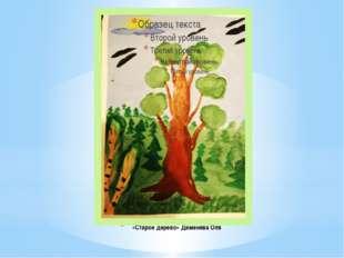 «Старое дерево» Деменёва Оля