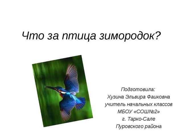 Что за птица зимородок? Подготовила: Хузина Эльвира Фаиковна учитель начальны...