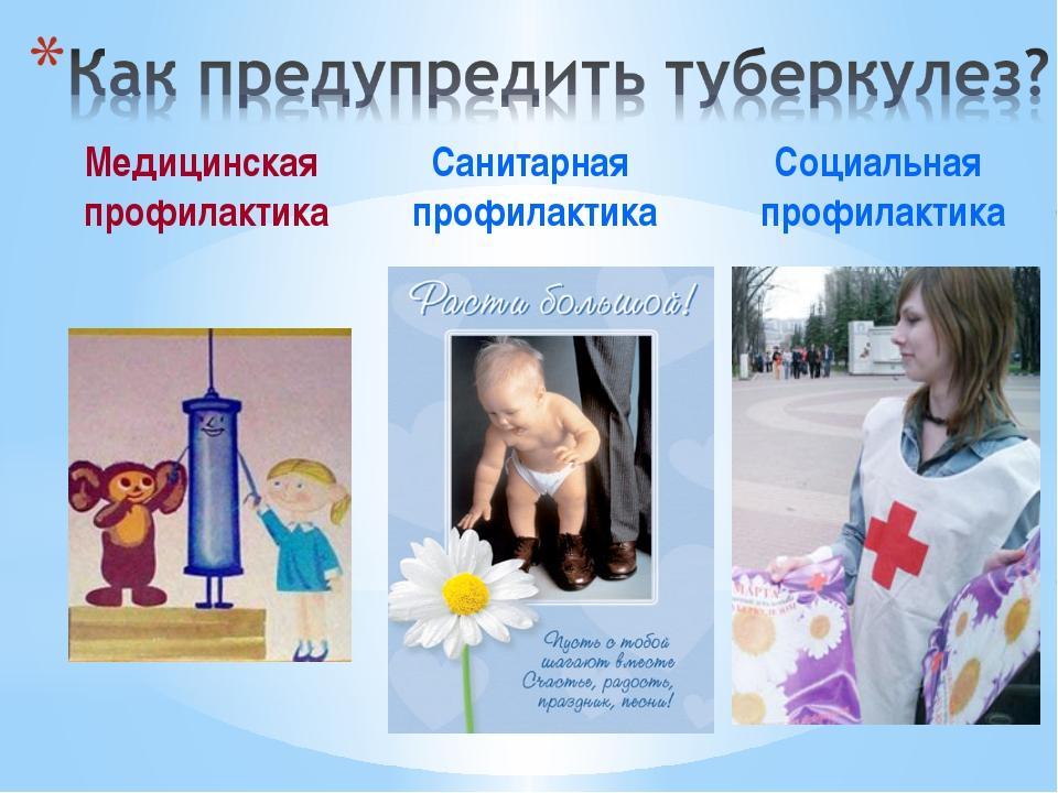Медицинская профилактика Санитарная профилактика Социальная профилактика