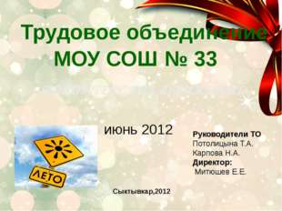 Трудовое объединение МОУ СОШ № 33 ВОЛОНТЕРСКОЕ ДВИЖЕНИЕ июнь 2012 Руководител