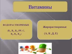 Витамины ВОДОРАСТВОРИМЫЕ (В1, В2, В6, РР, С, В5, В9, В12) Жирорастворимые (A,