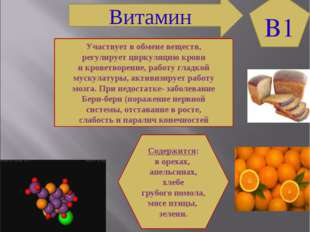 B1 Витамин Участвует в обмене веществ, регулирует циркуляцию крови и кроветво