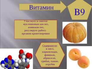 Участвует в синтезе нуклеиновых кислот, аминокислот, регулирует работу органо