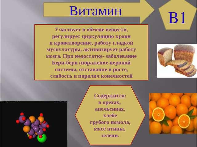 B1 Витамин Участвует в обмене веществ, регулирует циркуляцию крови и кроветво...