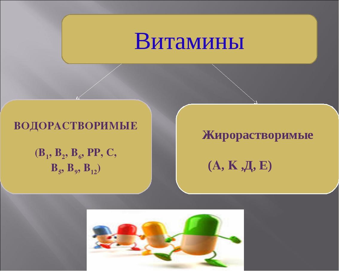Витамины ВОДОРАСТВОРИМЫЕ (В1, В2, В6, РР, С, В5, В9, В12) Жирорастворимые (A,...
