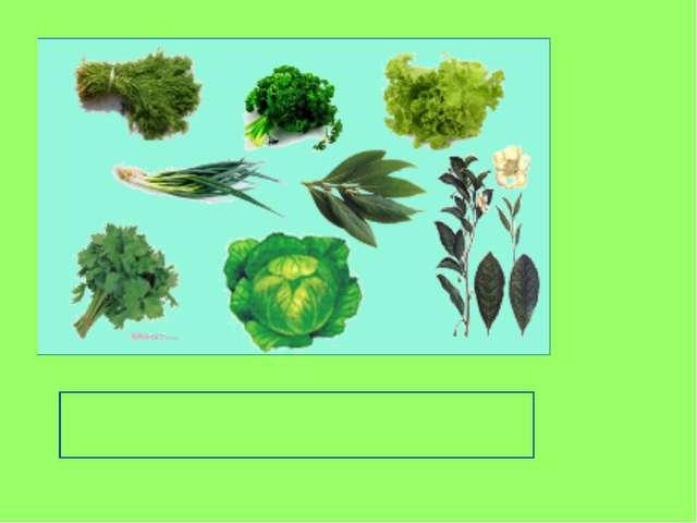 стебли и листья