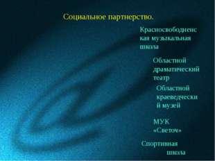Социальное партнерство. Спортивная школа МУК «Светоч» Красносвободненская муз