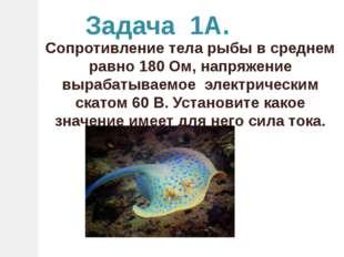Задача 1А. Сопротивление тела рыбы в среднем равно 180 Ом, напряжение вырабат