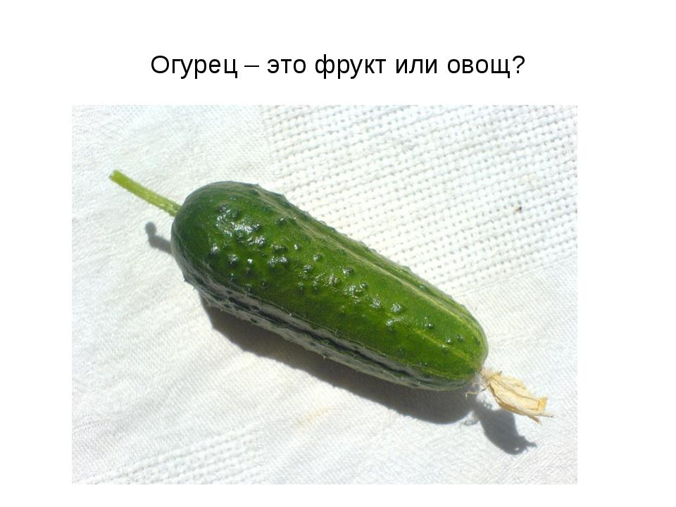 Огурец – это фрукт или овощ?