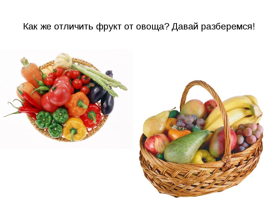Как же отличить фрукт от овоща? Давай разберемся!