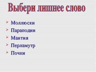 Моллюски Параподии Мантия Перламутр Почки