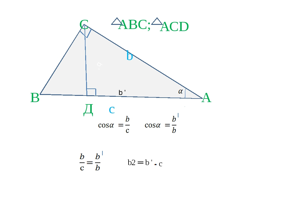 b ' А В Д С b с АСD АВС; b2 ═ b ' c b '