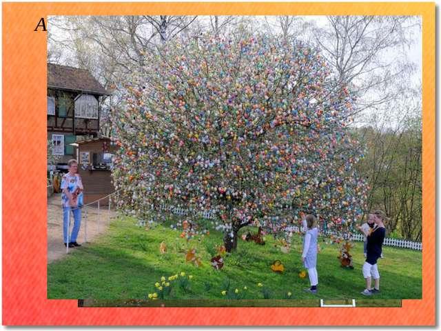 А еще в Англии есть традиция наряжать пасхальные деревья