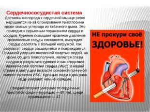 Желудок Одним из эффектов длительного курения является стимуляция секреции со