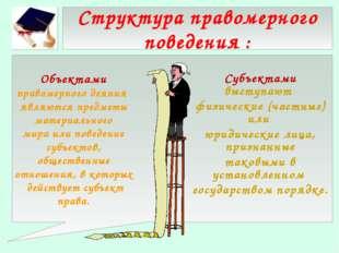 Структура правомерного поведения : Субъектами выступают физические (частные)