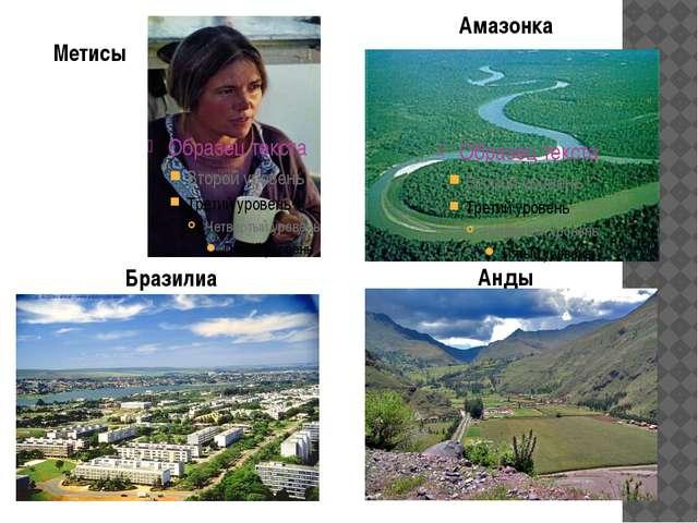 Метисы Амазонка Бразилиа Анды