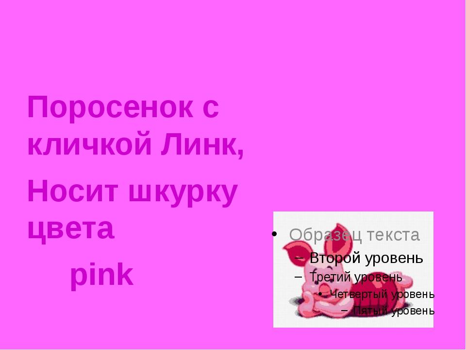 Поросенок с кличкой Линк, Носит шкурку цвета  pink