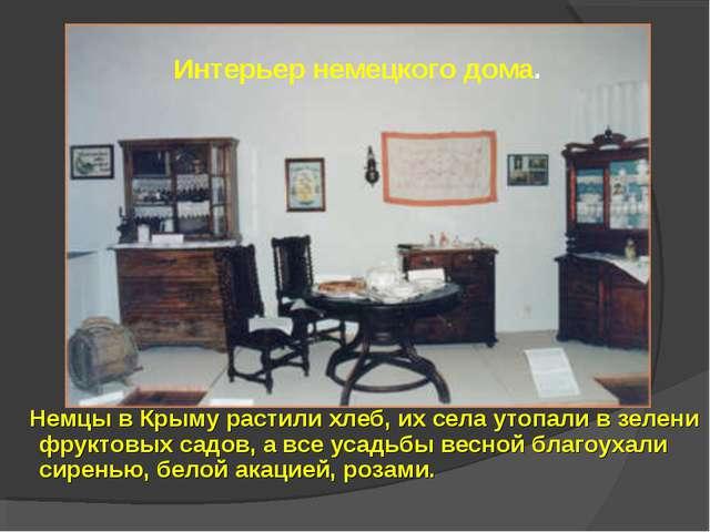 Немцы в Крыму растили хлеб, их села утопали в зелени фруктовых садов, а все...