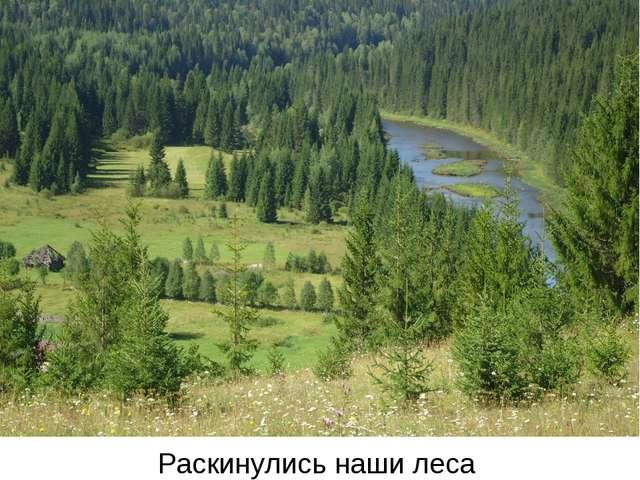 Раскинулись наши леса