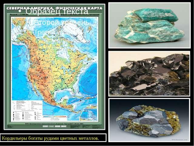 Кордильеры богаты рудами цветных металлов.