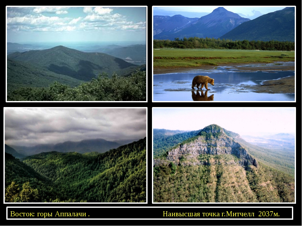 Восток: горы Аппалачи . Наивысшая точка г.Митчелл 2037м.