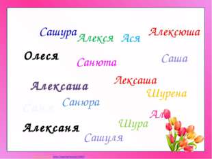 Алексаня Алексюша Ася Шурена Алекся Алексаша Шура Лексаша Сашуля Санюта Санюр