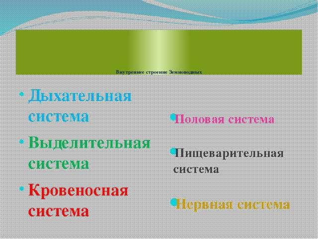 Внутреннее строение Земноводных Дыхательная система Выделительная система Кр...