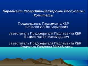 Парламент Кабардино-Балкарской Республики. Комитеты Председатель Парламента