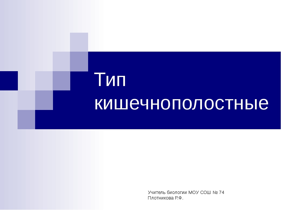 Тип кишечнополостные Учитель биологии МОУ СОШ № 74 Плотникова Р.Ф.