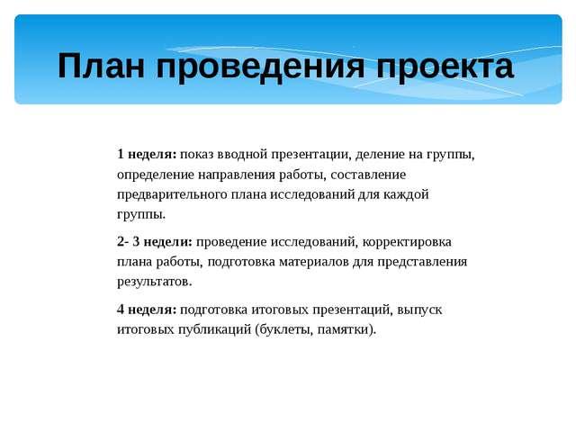 План проведения проекта 1 неделя: показ вводной презентации, деление на групп...
