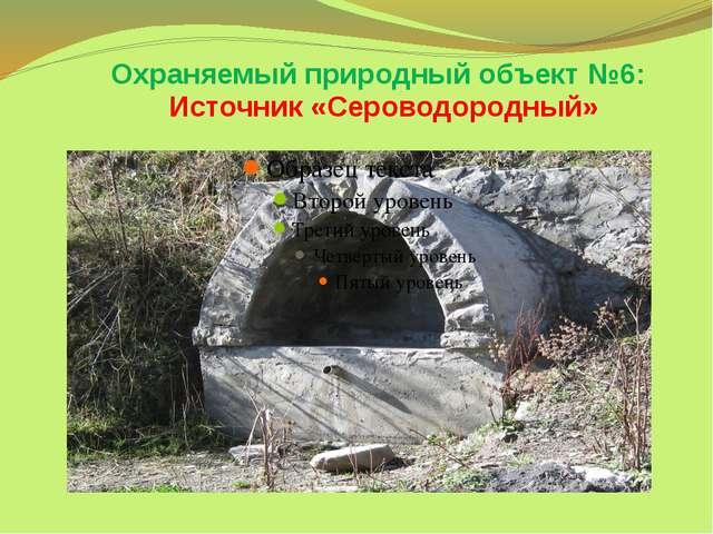 Охраняемый природный объект №6: Источник «Сероводородный»