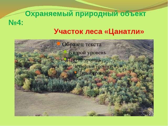 Охраняемый природный объект №4: Участок леса «Цанатли»