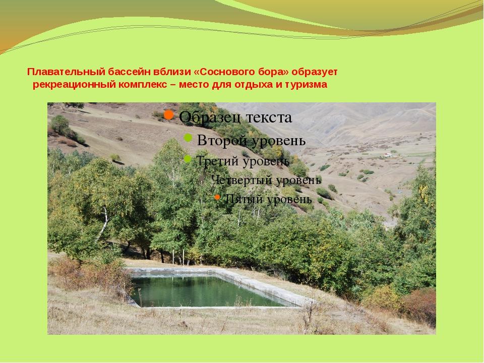 Плавательный бассейн вблизи «Соснового бора» образует рекреационный комплекс...