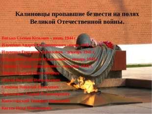 Калиновцы пропавшие безвести на полях Великой Отечественной войны. Витько Сте
