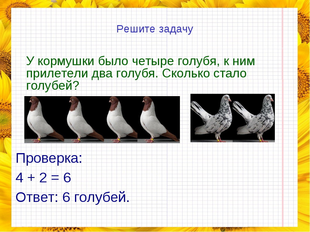 Решите задачу У кормушки было четыре голубя, к ним прилетели два голубя. Ско...