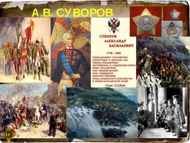 А.В. СУВОРОВ 14 14