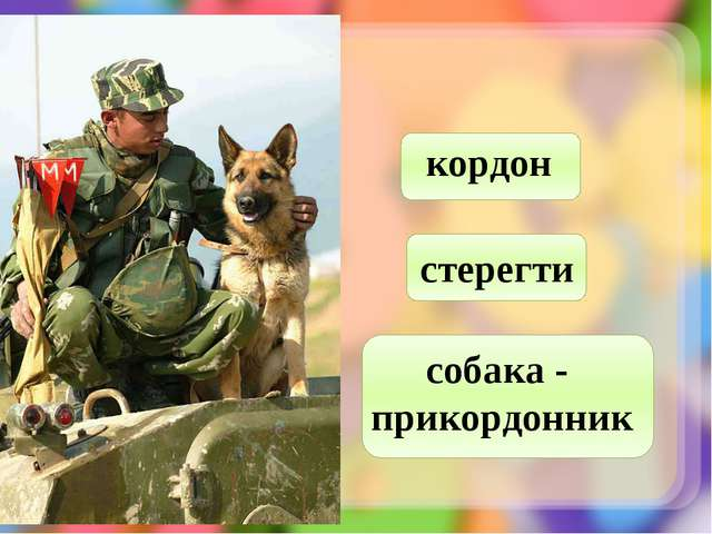 кордон стерегти собака - прикордонник