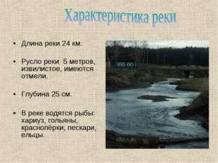 Длина реки 24 км. Русло реки 5 метров, извилистое, имеются отмели. Глубина 25