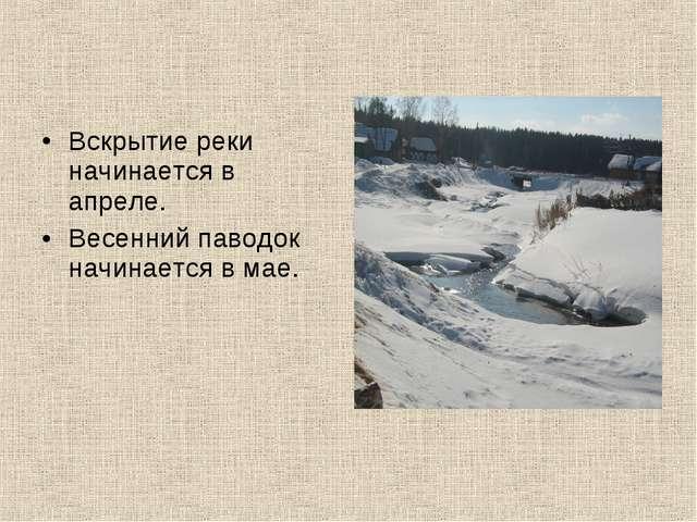 Вскрытие реки начинается в апреле. Весенний паводок начинается в мае.