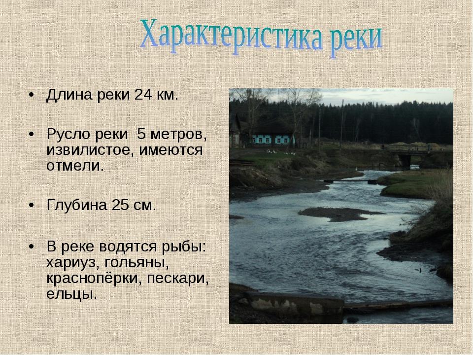 Длина реки 24 км. Русло реки 5 метров, извилистое, имеются отмели. Глубина 25...